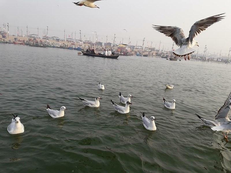 Allahabad1.jpg