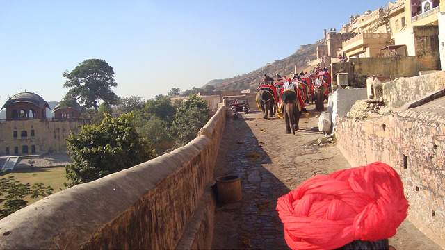 Private Tour Jaipur Amber Fort WITH Elephant Ride