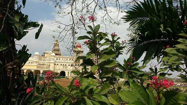 Full Day Sighseeing Tour  Mysore /Karnataka