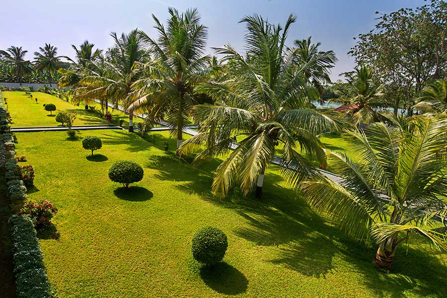 Ideal%20river%20view%20Tanjore%20lawn.jpg