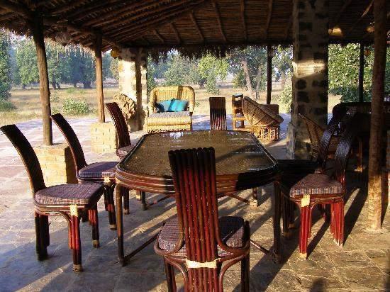 Jungle%20Mantra%20-%20Bandhavgarh%20%20(1).jpg