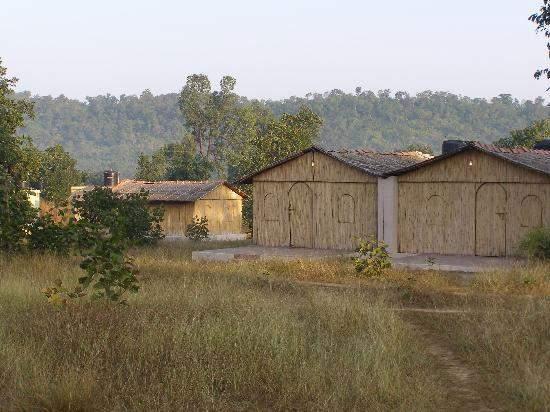 Jungle%20Mantra%20-%20Bandhavgarh%20%20(2).jpg