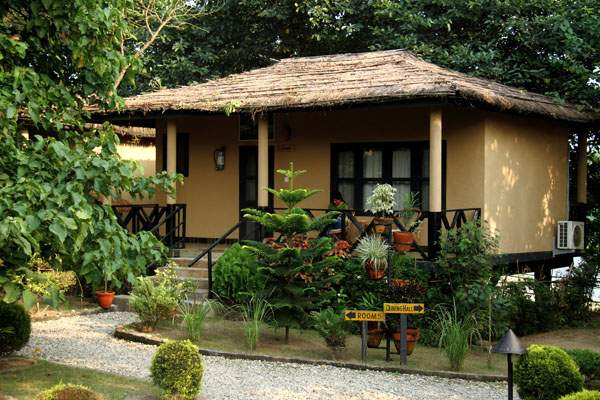 Jungle Villa Resort Chitwan view1.jpg