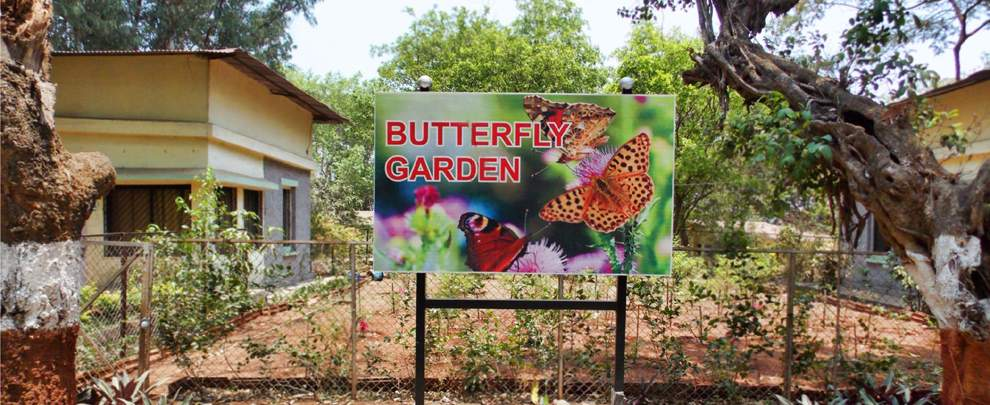 MTDC%20Karla%20Lonavala%20butterfly-garden.jpg