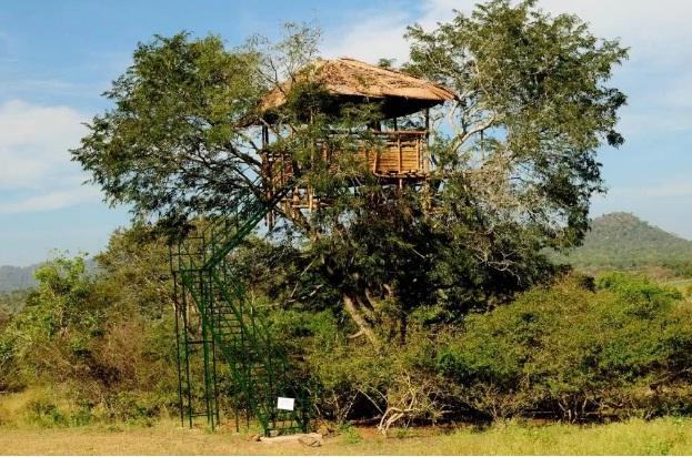 bamboobankmasingudi2.jpg